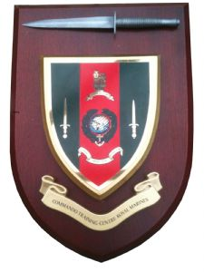 CTC Commando Training Centre Royal Marines Regimental Military Wall Plaque & Pewter Dagger